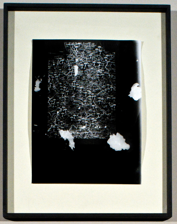 Galleria Fonti ARTISSIMA 2010